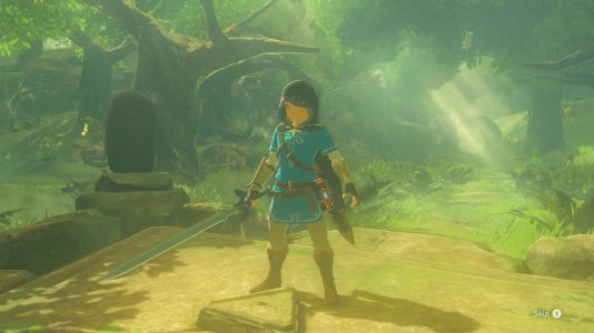 Breath of the Wild Trial of the Sword