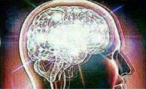 Brain Meme