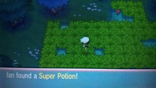 Found a Super Potion