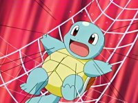 Squirtle Shocked