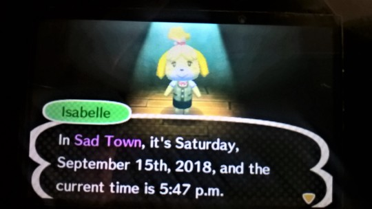 New Leaf The Time in Sad Town