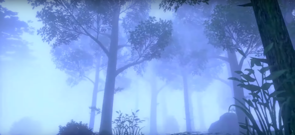 Pokemon Sword and Shield Foggy Woods