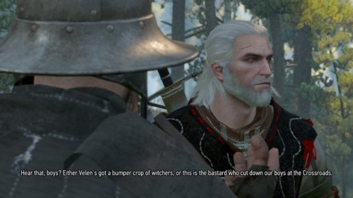 Witcher Bumper Crop of Witchers