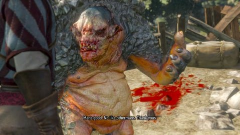 Witcher No Like Othermans